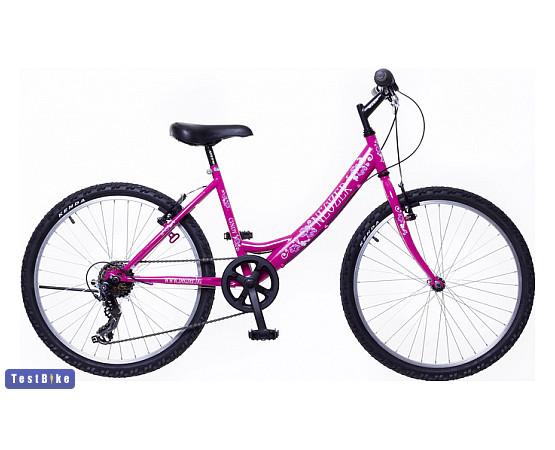 Neuzer Bobby 24 2020 gyerek kerékpár gyerek kerékpár
