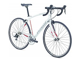 Specialized Secteur Sport Int Triple 2013